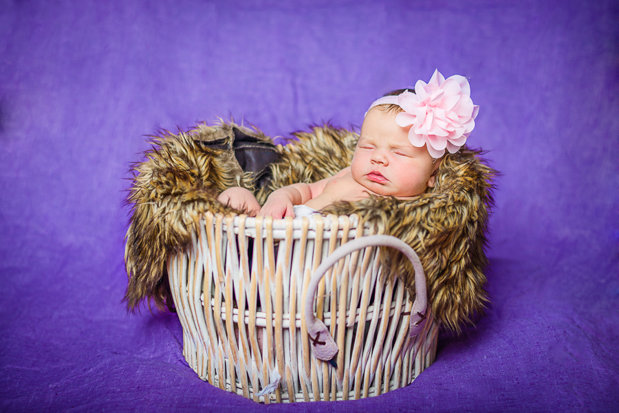 Newborn baby session swansea south wales-14